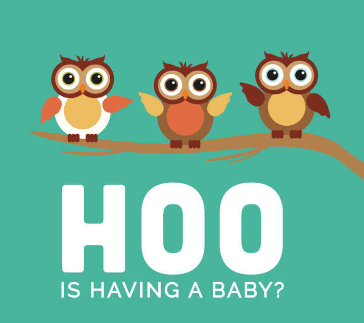 Baby Shower downloadable Invitations - Guess HOO?