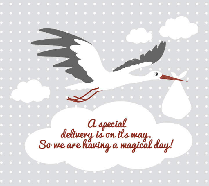 stork invitations